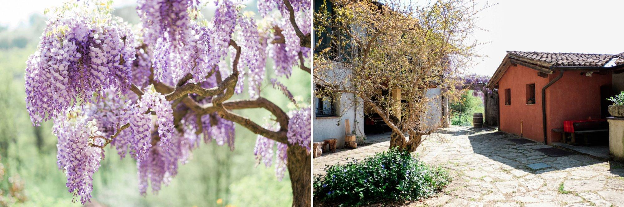 Wedding in Castello di Spessa, Wedding in Castello di Spessa – Nathan&Becky